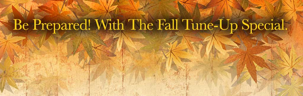 fall-banner-special